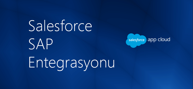 salesforce ve sap entegrasyonu inspark